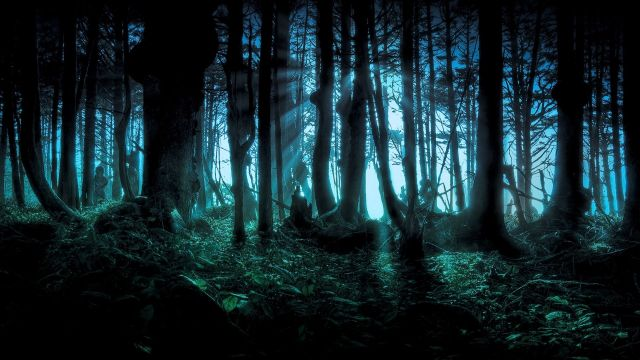 spooky-forest-670726